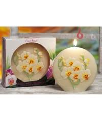 Disk 130 Orchidea sviečka