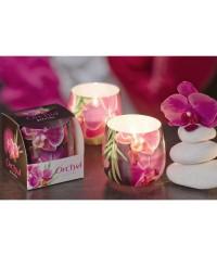 Ozóna sklo Orchidea sviečka