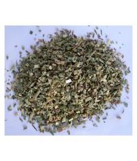 Echinacea (kvet + vňať) čaj