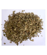 Myrtovník (citrónový list) čaj
