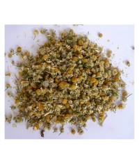 Rumanček pravý (kvet) čaj