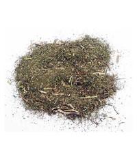 Amazonský Muňa-muňa bylinný čaj