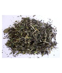 Biely čaj China Pai Mu Tan White tea 25 g