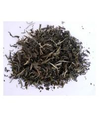 Biely čaj Snow Buds